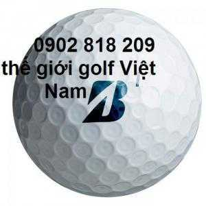 In logo bóng golf