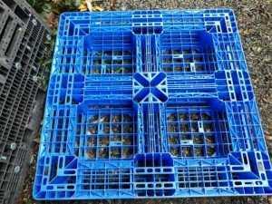 Pallet nhựa cũ giá rẻ tại Hưng Yên
