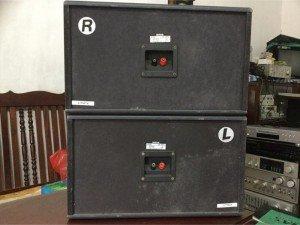 Loa nghe nhạc & karaoke BMB CS-350V