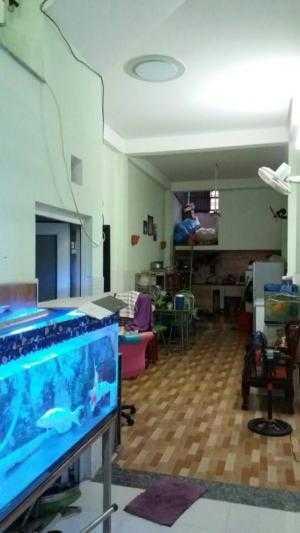 Bán nhà Gò Vấp, Lê Đức Thọ 62m 3 lầu HXH