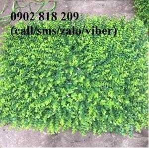 Cỏ nhân tạo dán tường, cỏ trang trí tường