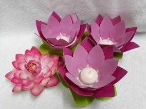Hoa sen mouse (hay còn gọi là đèn thả hoa đăng)