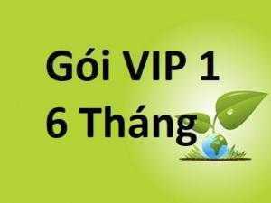 Báo Giá Mua Bán Nhanh Gói VIP 1- 6 tháng ngày up 10 tin