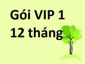 Báo Giá Mua Bán Nhanh Gói VIP 1- 12 tháng