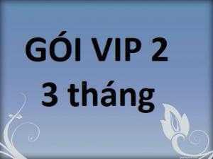 Báo Giá Mua Bán Nhanh Gói VIP 2- 3 tháng