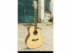Guitar hồng đào kĩ