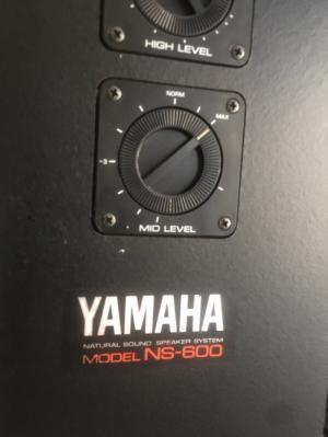 Chuyên bán Loa Yamaha NS - 600 hàng đẹp