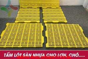 Sàn nhựa chăn nuôi Heo ( Sàn Lợn ) giá rẻ toàn quốc