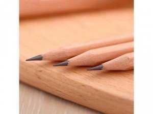 Hộp bút chì 50 cây