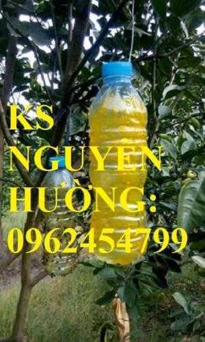 Cung cấp bình xịt ruồi vàng, thuốc diệt ruồi vàng, thuốc bảo vệ thực vật, giao hàng toàn quốc