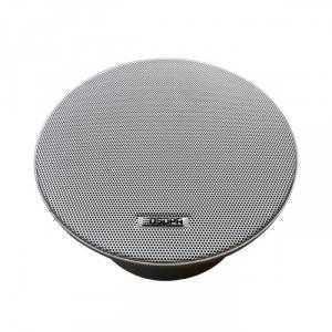 Loa Bluetooth, âm trần