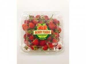 Raspberry - Phúc Bồn Tử - Mâm Xôi TP Hồ Chí Minh