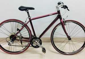 Xe đạp nhật bãi Giant Escape đỏ đun
