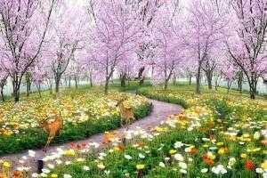 Tranh 3d vườn hoa phong cảnh