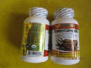 Bán Sản phẩm đề kháng,  cải thiện chức năng gan, chống lão hóa-CORDYCEP 950