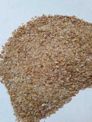 Bán Vi sinh nguyên liệu Bio Pro hàng USA xử lý đáy, nước