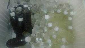 Nước Sâm rong biển thanh lọc cơ thể mát gan giải độc 400ml