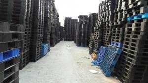 Mua bán pallet nhựa Bắc Giang, pallet nhựa cũ Bắc Giang