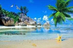 Gạch tranh 3D bãi biển xanh