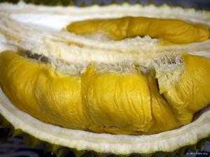Sầu riêng hạt lép - Bao ăn luôn nha