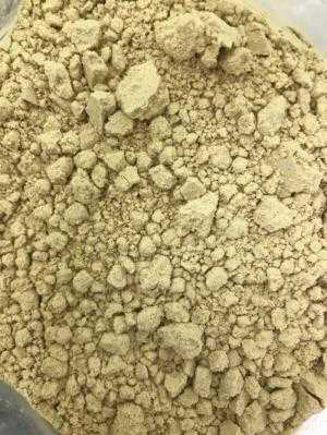 Mầm đậu nành