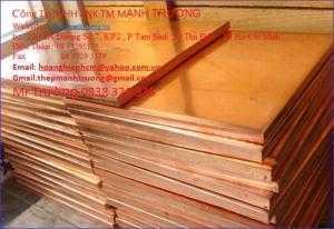 Cung Cấp : Tấm Đồng đỏ C1100,đồng hợp kim C1100, 25mm,30mm,35mm,45mm,50mm,55mm,60mm,70mm,80mm,