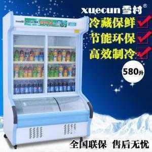 Tủ đông mát Xuecuns HY 1200C 580