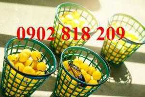 Rổ golf nhựa chứa 100 banh (bóng) golf
