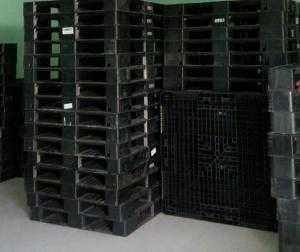 Pallet nhựa cũ tại quận Gò Vấp