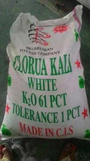 Magie sulphate MgSO4, Kali Clorua KCl cung cấp khoáng trong ao nuôi thủy sản