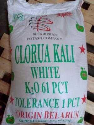 Phân phối nguyên liệu kali clorua Bổ Sung Khoáng Đa Lượng Kali cần thiết ao nuôi tôm giá sỉ và lẻ