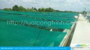 Lưới chắn ao tôm, lưới nuôi tôm, lưới che nắng nuôi tôm