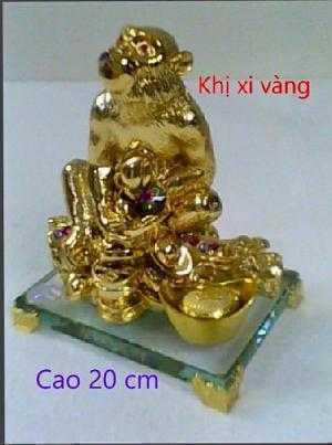 khỉ xi vàng (con giáp lớn)