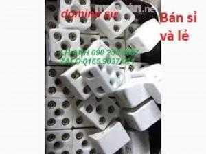 Điện trở sứ Domino