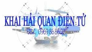 Đào tạo khai báo hải quan điện tử tại TP.HCM