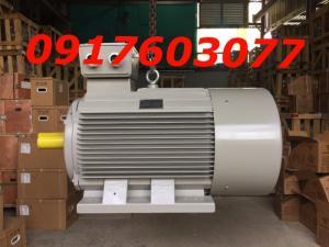 Nhà phân phối trực tiếp động cơ motor điện