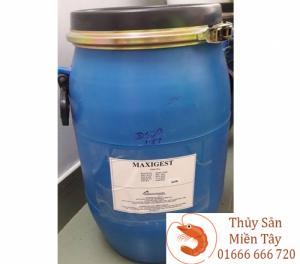 Maxigest Enzymes