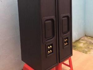 Loa Panasonic AV502, 160w, Bi-wire