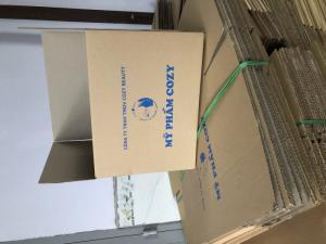 Thùng carton 25x20x10cm 50 cái
