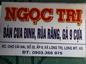 Bán Cua Đinh Việt, Ngọc Trị