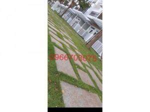Cỏ trang trí cỏ thảm