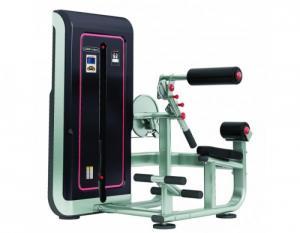 Máy khối tập cơ bụng và lưng TGS-1009 - Gymaster