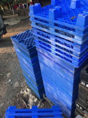 Pallet nhựa chân cốc 1200x1000x145mm