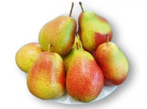 Viện cây giống trung ương, cung cấp giống lê đỏ nam phi, nhập khẩu nguyên cây