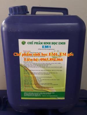 Sử dụng chế phẩm sinh học EM1 - EM gốc ủ EM tỏi cho gia súc, gia cầm
