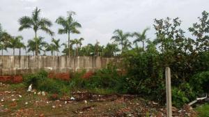 Cho thuê đất quận 9 mở trường mầm non TP HCM