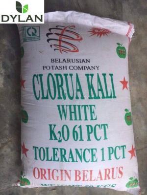 Kali bột trắng