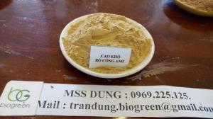 Chuyên sản xuất cao khô Bồ Công anh