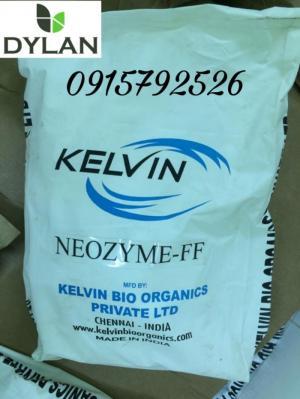 Men vi sinh đường ruột đậm đặc Neozyme FF