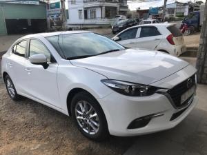 Mioto – dịch vụ cho thuê xe tự lái 4-7c giá rẻ, nhiều dòng đời mới tại Tphcm